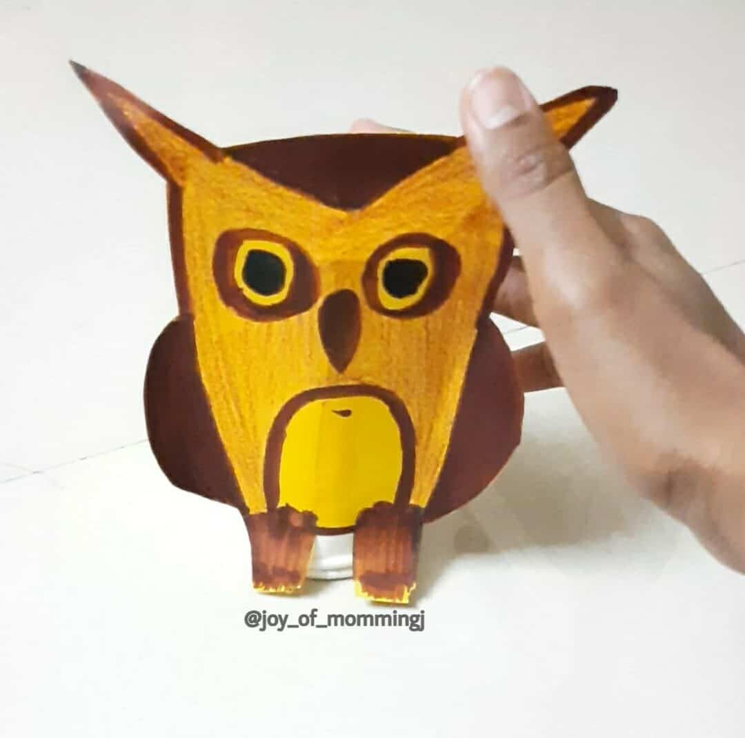 Featured image of Jumping Owl DIY Toy