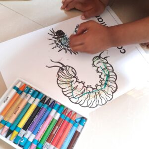 Coloring Caterpillar in the form of letter C